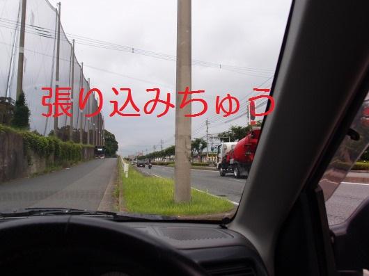 P7163233.jpg