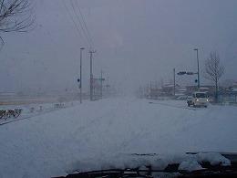 10  1月雪.jpg