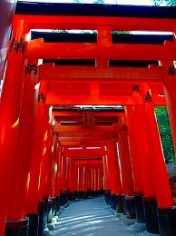 68 3月 伏見稲荷神社.jpg