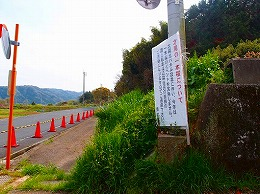 81 4月 才尾の一本桜.jpg